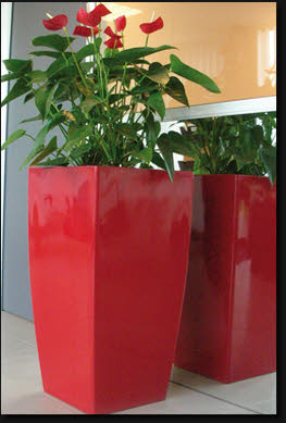 A Large Range Of Plant Pots Planters Or Containers